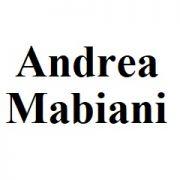 Женские сумки Andrea Mabiani из натуральной кожи