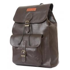 Функциональный мужской кожаный рюкзак коричневого цвета в городском стиле от Carlo Gattini, арт. 3021-04